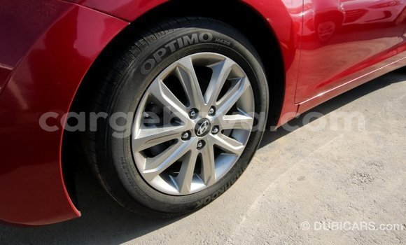 Buy Import Hyundai Elantra Red Car in Import - Dubai in Ethiopia