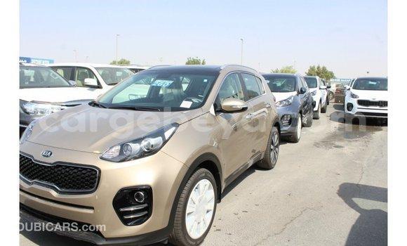 Buy Import Kia Sportage Black Car in Import - Dubai in Ethiopia
