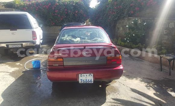 Buy Used Toyota Corolla Red Car in Addis–Ababa in Ethiopia