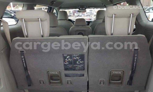 Buy Import Kia Carnival Other Car in Import - Dubai in Ethiopia