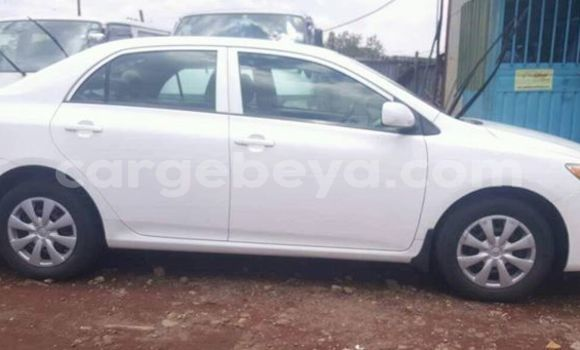 Buy Used Toyota Corolla White Car in Addis–Ababa in Ethiopia