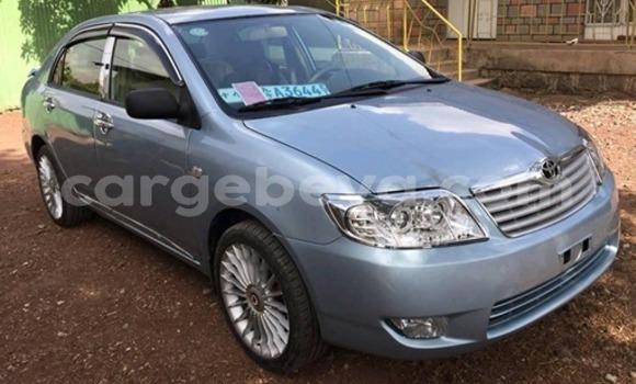 Oofamaa Toyota Corolla Blue Makiinaa iti Addis–Ababa keessatti Ethiopia keessatti
