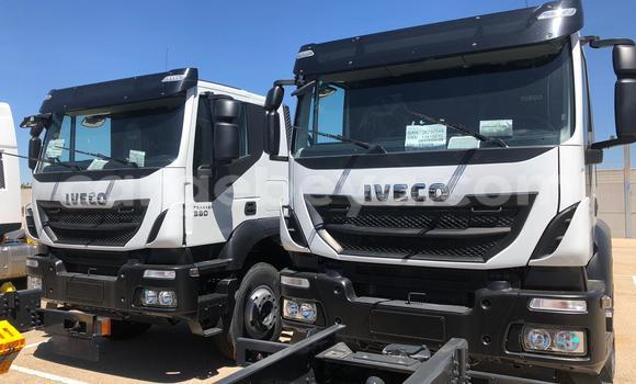 Buy New Iveco Trakker White Truck in Abiy Adi in Tigray