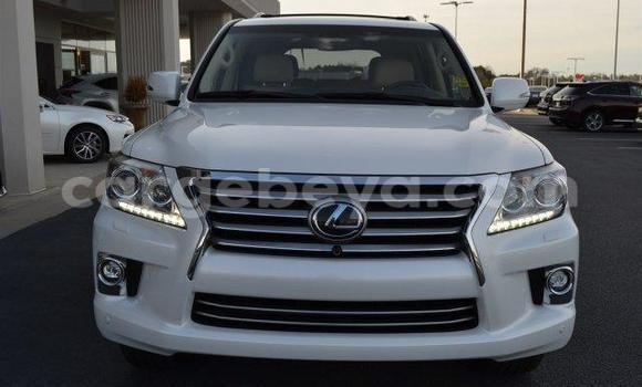 Buy Used Lexus LX 570 White Car in Maych'ew in Ethiopia