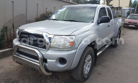 Buy Used Toyota Tacoma Silver Car in Addis Ababa in Ethiopia