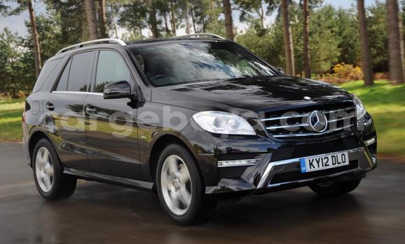 Buy New Mercedes‒Benz 230 Black Truck in Addis Ababa in Ethiopia