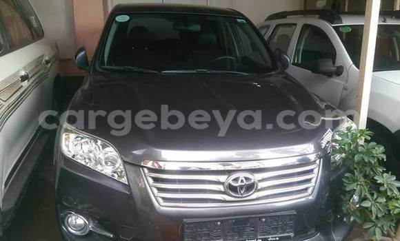 Buy Used Toyota RAV4 Other Car in Addis Ababa in Ethiopia