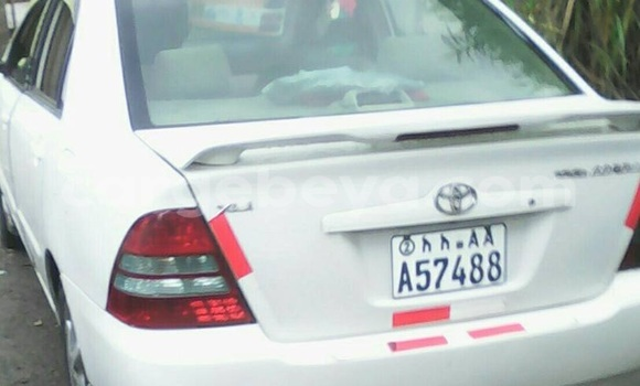 Buy Used Toyota Corolla White Car in Addis Ababa in Ethiopia