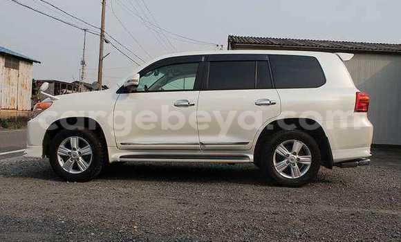 Buy New Toyota Land Cruiser White Car in Addis–Ababa in Ethiopia