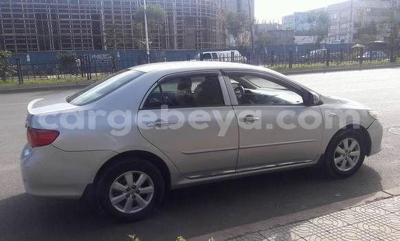 Buy Used Toyota Corolla Silver Car in Addis Ababa in Ethiopia
