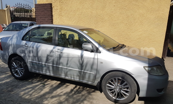 Buy New Toyota Corolla Silver Car in Addis–Ababa in Ethiopia