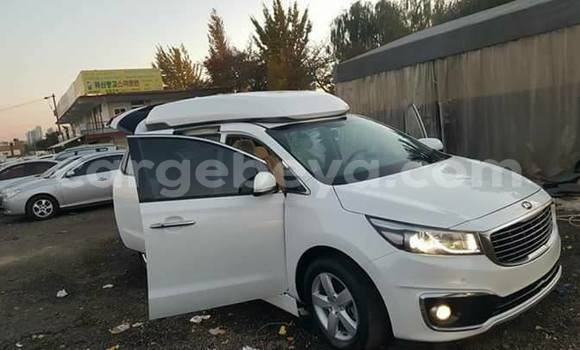 Buy Used Toyota Carina White Car in Dire–Dawa in Ethiopia