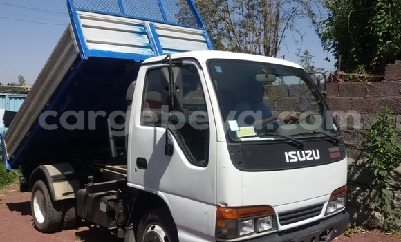 Buy Used Isuzu Wizard White Car in Mekele in Ethiopia