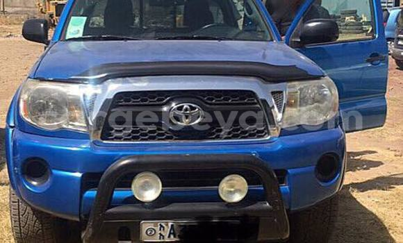 Buy Used Toyota Tacoma Blue Car in Mekele in Ethiopia