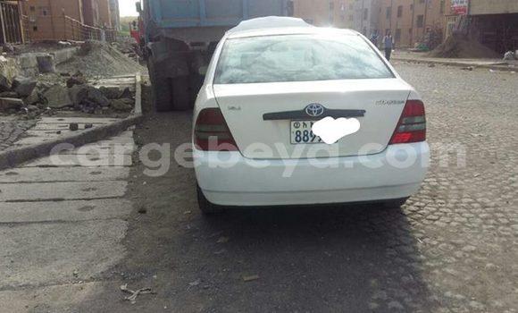 Buy Used Toyota Corolla White Car in Mekele in Ethiopia