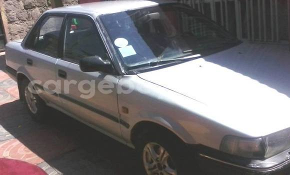 Buy Used Toyota Corolla Silver Car in Mekele in Ethiopia