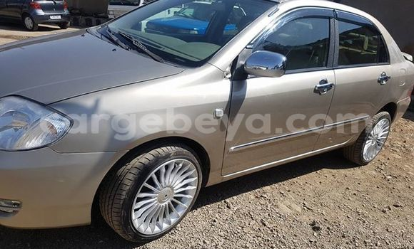 Buy Used Toyota Corolla Other Car in Mekele in Ethiopia