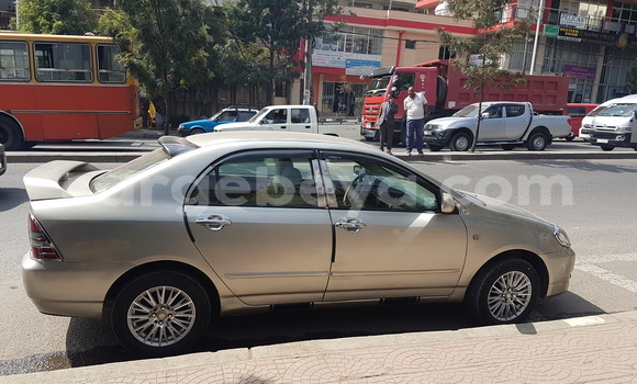 Buy Used Toyota Corolla Brown Car in Addis–Ababa in Ethiopia