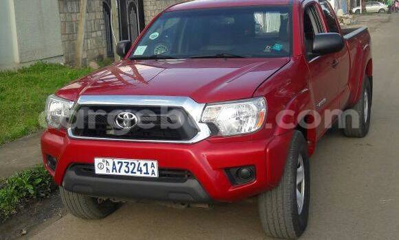 Buy New Toyota Tacoma Red Car in Addis Ababa in Ethiopia