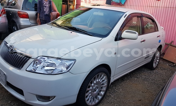 Buy New Toyota Corolla White Car in Addis–Ababa in Ethiopia
