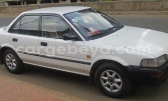 Buy Used Toyota Corolla White Car in Addis–Ababa in Ethiopia