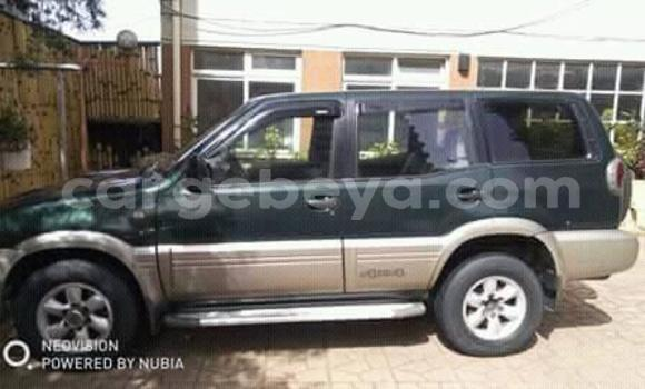 Buy Used Nissan Terrano Green Car in Addis–Ababa in Ethiopia