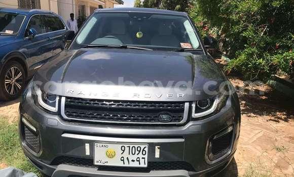Buy Used Land Rover Range Rover Evoque Silver Car in Jigjiga in Jigjiga