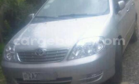 Buy Used Toyota Corolla Silver Car in Addis–Ababa in Ethiopia