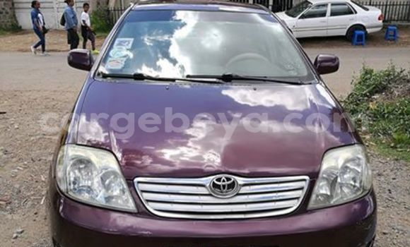 Buy Imported Toyota Corona Red Car in Addis–Ababa in Ethiopia