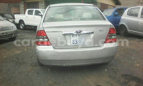 Buy Imported Toyota Corolla Silver Car in Addis–Ababa in Ethiopia