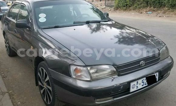 Buy Used Toyota Carina Other Car in Addis–Ababa in Ethiopia