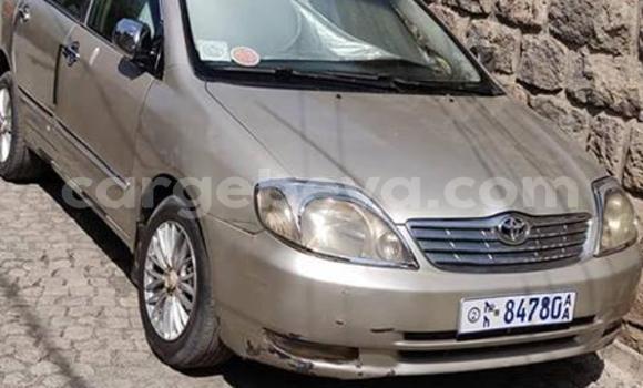 Buy Used Toyota Corolla Beige Car in Addis–Ababa in Ethiopia