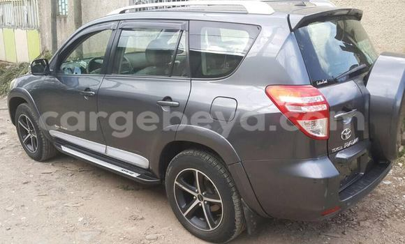 Buy Used Toyota RAV4 Black Car in Addis–Ababa in Ethiopia