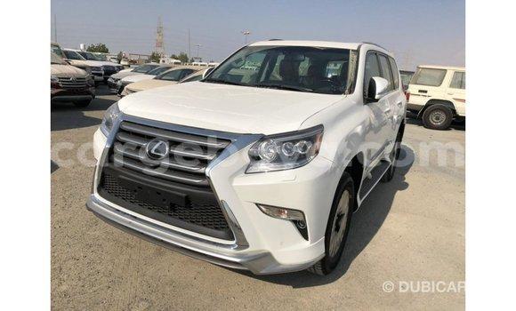 Buy Import Lexus GX White Car in Import - Dubai in Ethiopia