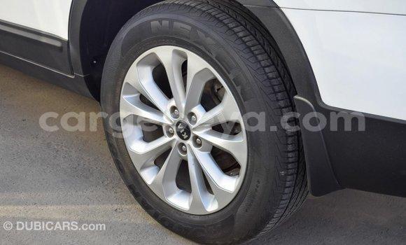 Buy Import Kia Sorento White Car in Import - Dubai in Ethiopia