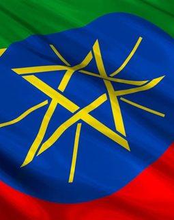 Thumb cargebeya amharic mekina