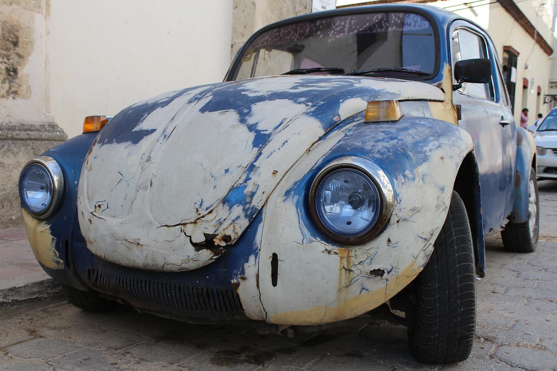 Beetle 2085083 1920