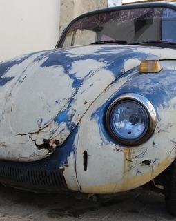 Thumb beetle 2085083 1920